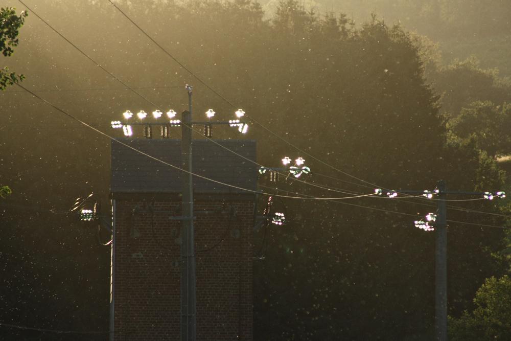Elektriciteitsleidingen in avondlicht