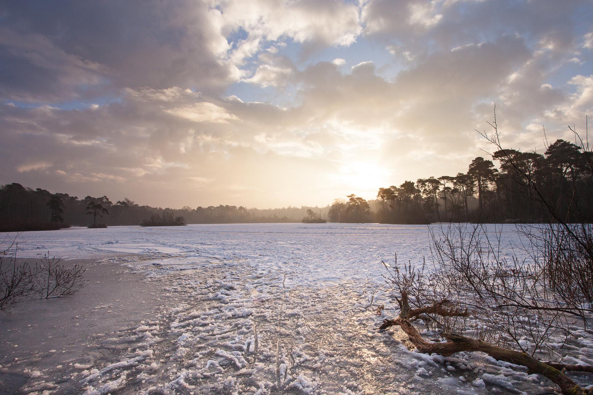 Landschapsfotografie winter Oisterwijk