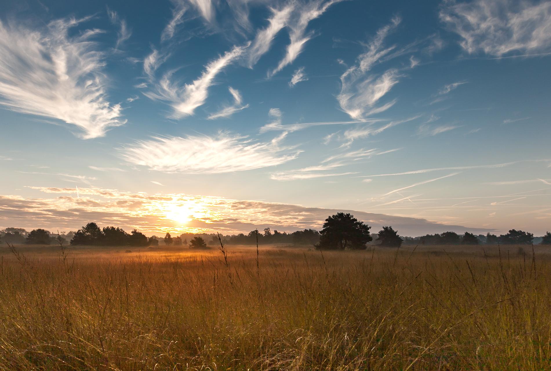 Landschapsfotografie zon en blauwe lucht
