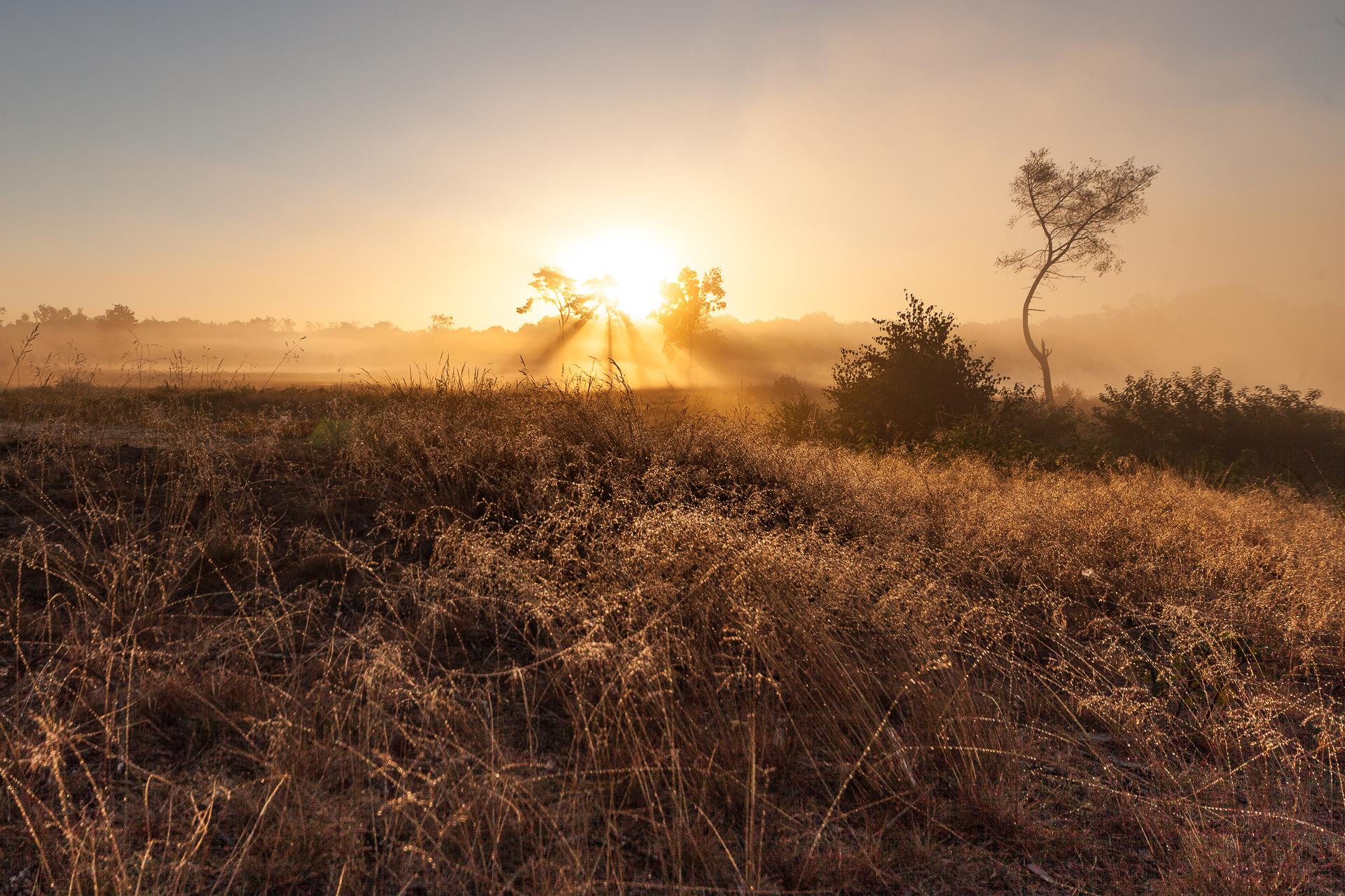 Landschapsfotografie Malpie zonsopgang